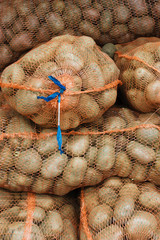Net sacks with potatoes in the food store