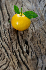 oranges (Citrus Japonica Thunb) on a wooden