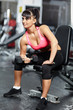 Fitness girl doing biceps workout