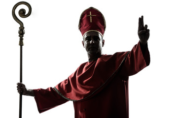man cardinal bishop silhouette saluting blessing
