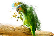 Green parrot on the branch, abstract animal concept - 75607650