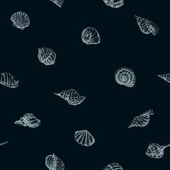 pattern of the seashells