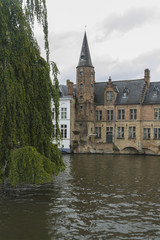 Dijver Canal with weeping willow tree, Bruges