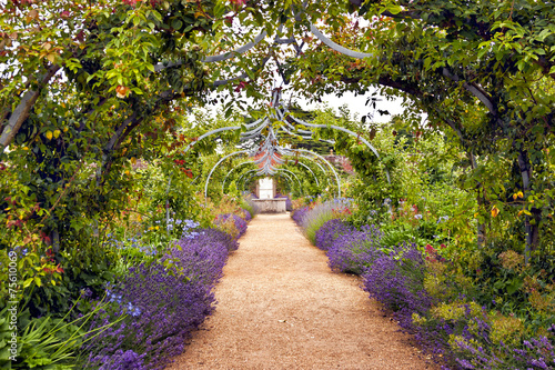 Fotobehang Tuin Colourful English summer flower garden with a path under archway