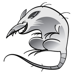 Laughing rat isolated on the white background