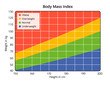 Body Mass Index in cm and kg - 75611860