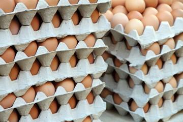 An assortment of fresh eggs, Provins market France
