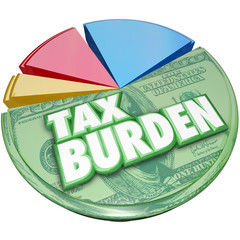 Tax Burden Money Owed Government Pie Chart Payment