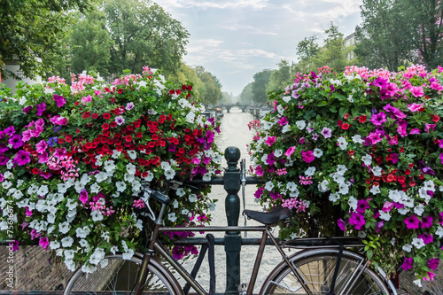 Plexiglas Amsterdam Bicycle and Flowers Over Canal in Amsterdam