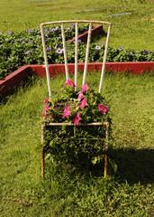 Steel chair flowerpot on garden background