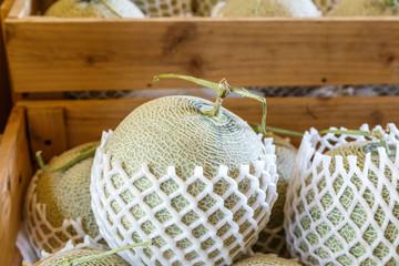 Sweet melon raw