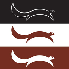 Vector image of an squirrel design