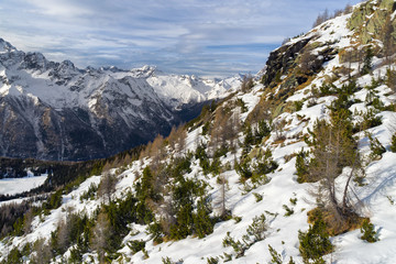 winter mountain panorama in Valmalenco, Sondrio, Italy