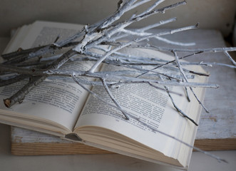 white branches on open book