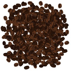 Realistic illustration of coffee beans