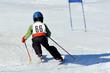 Kleiner Skirennläufer
