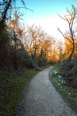 Sentiero Oasi Verde