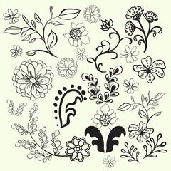 Hand Drawn Floral Design ELements - Illustration