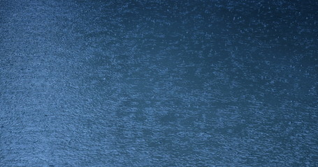 Drops in rain pool 4k