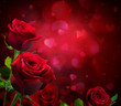 canvas print picture - valentine background with hearts and red roses