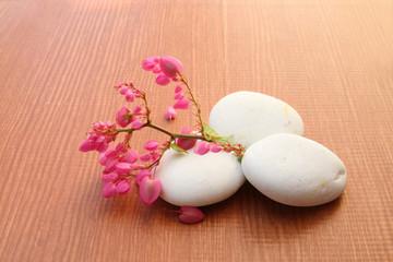 coral vine and white stone
