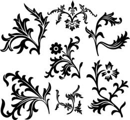 Ornamental Design (vector)