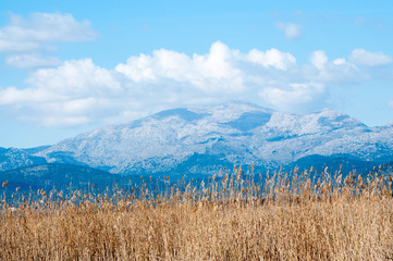 Albufera natural reserve, Tramuntana mountains