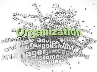 3d imagen Organization  issues concept word cloud background