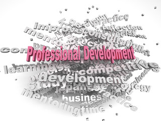 3d image professional development  issues concept word cloud bac