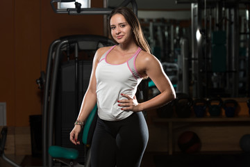 Young Brunet Woman Posing In The Gym