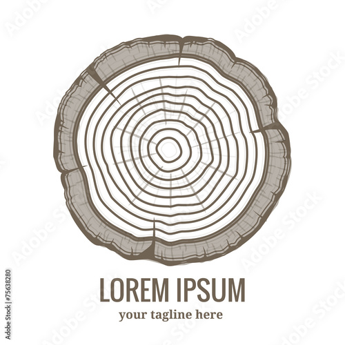 Annual tree growth rings logo icon - 75638280