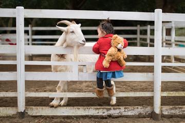 山羊と遊ぶ子供