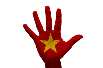 palm flag vietnam