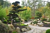 Fotoroleta Japan Garden