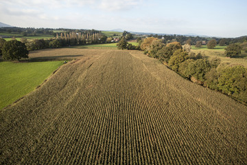 Landscape viewed from hot air balloon. Farmed fields, grassland and woodland.