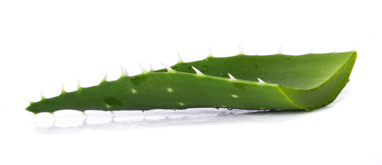 Aloevera on the table
