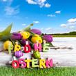 Frohe Ostern auf Birke Hintergrund Himmelblau