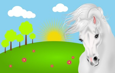 White horse with landscape