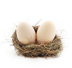 Two eggs inside the nest