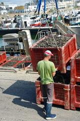 manutentionnaire sur un quai de port