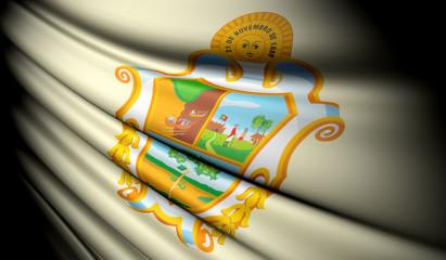 Flag of Manaus (Brazil)