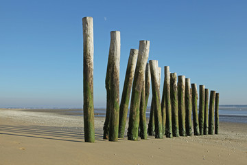 éperon sur une plage