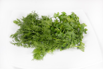 a bunch of parsley