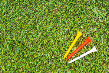 Golf club and teel in grass
