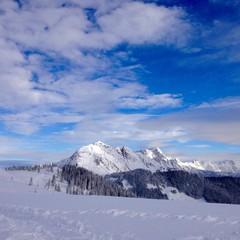 landschaft im winter in den bergen