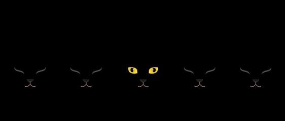黄色い目の黒猫