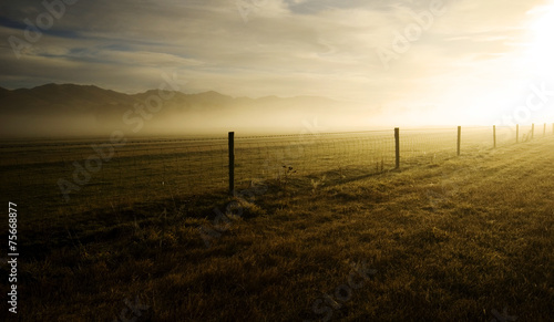 canvas print picture Sun Shining On The Field Covered With Fog