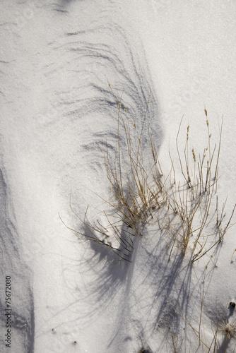 Snow Textures - 75672080