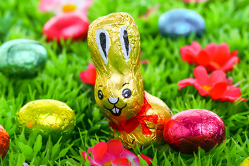 Ostern: Schokoladenhase auf Wiese mit Ostereiern