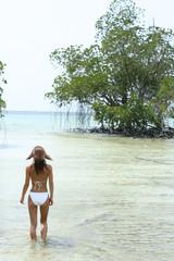 南国の自然なビーチと水着の女性